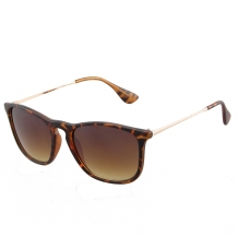 Wayfarer Slim Steel Brown Deco UV400 Brown Gradient